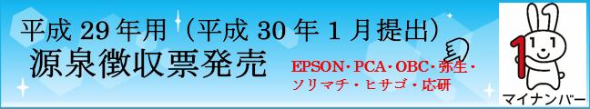 平成29年源泉徴収票発売
