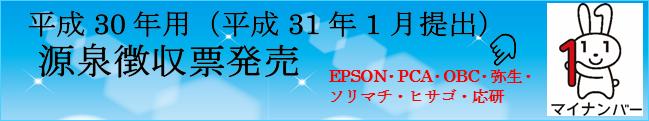 平成30年度源泉徴収票発売